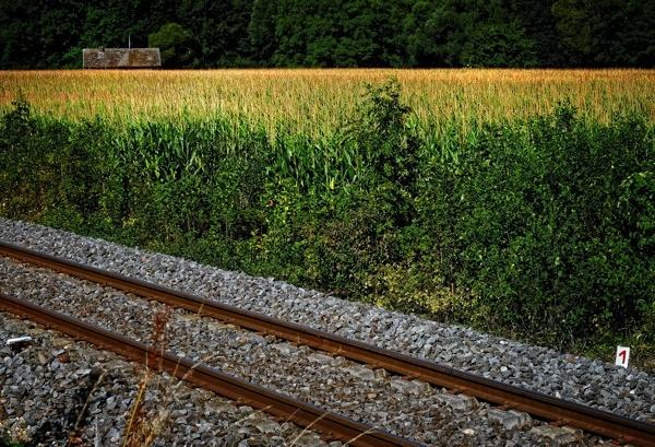 Railway #1.jpg