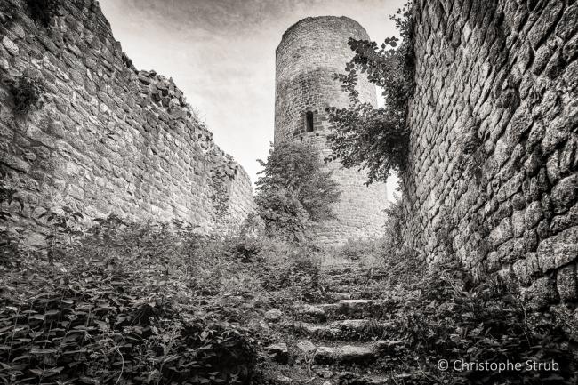 Chateau du Pflixbourg-2.jpg