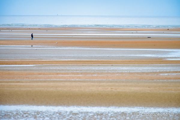 Seul sur la plage.jpg