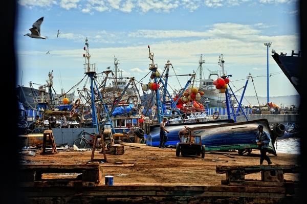 Port de pêche.jpg