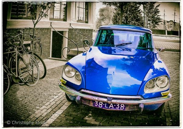 DS bleue.jpg